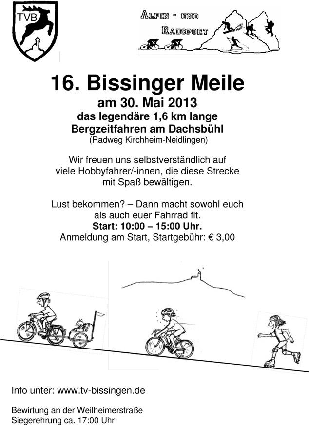 2013 Plakat Meile